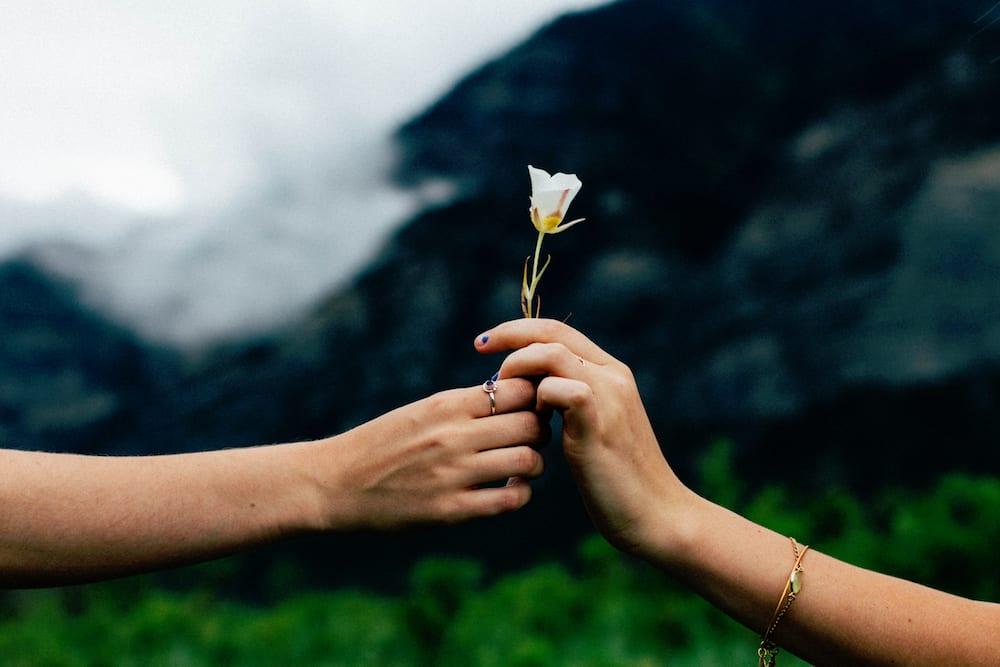 Jak budować angażujące relacje z czytelnikami